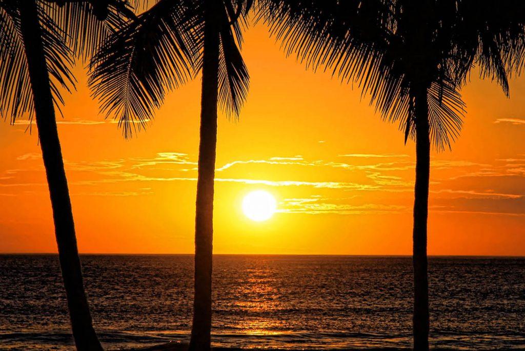 Sunset Walks